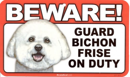 BewareBichons500Wide.jpg