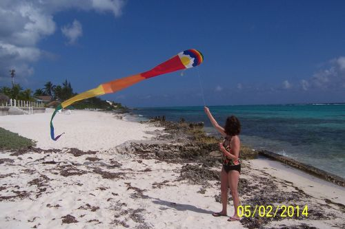 Carol Flying Kite 500 Wide.jpg