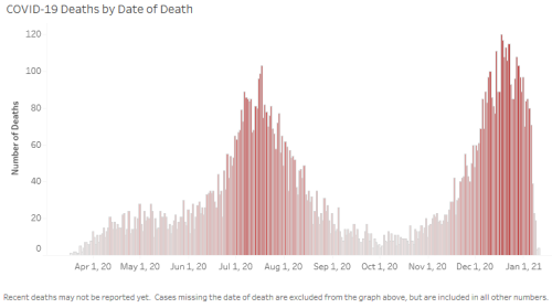 AZCovidDeathsGraph-500 wide.png